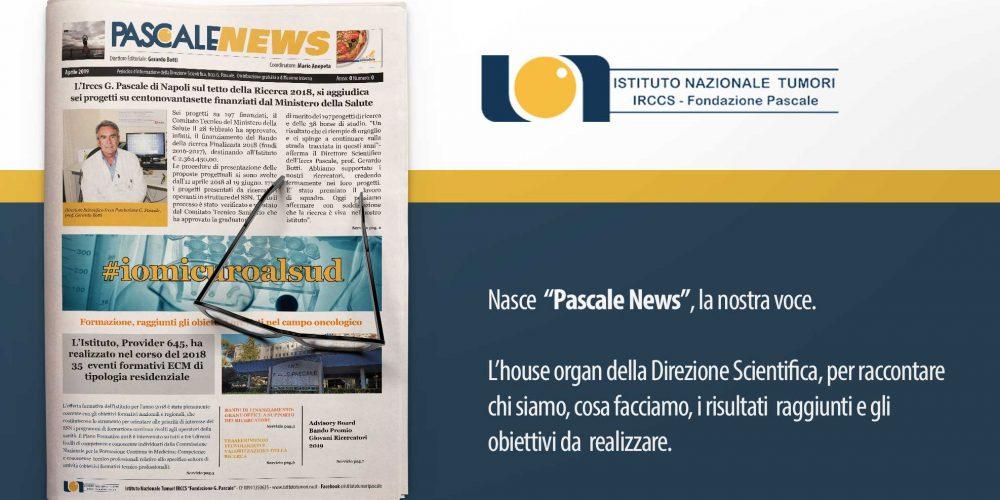 "Nasce  ""Pascale News"", la nostra voce."