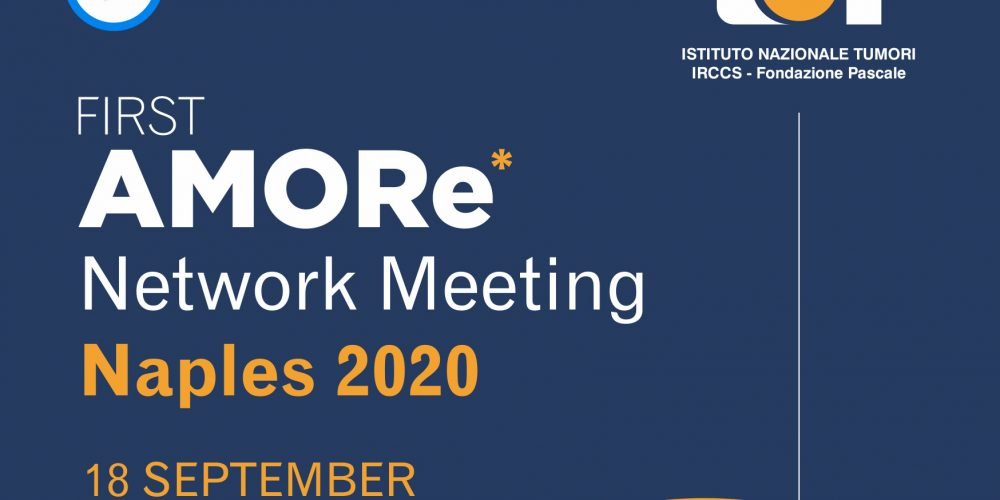 FIRST AMORe Network Meeting  Naples 2020